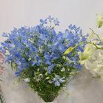 Гибридная выставка ЦветыЭкспо-2020
