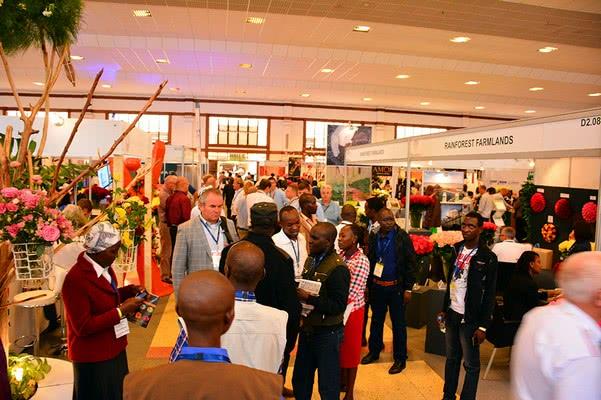 Инициативы Цветоводческого Совета Кении (KFC) в отношении долгосрочного развития