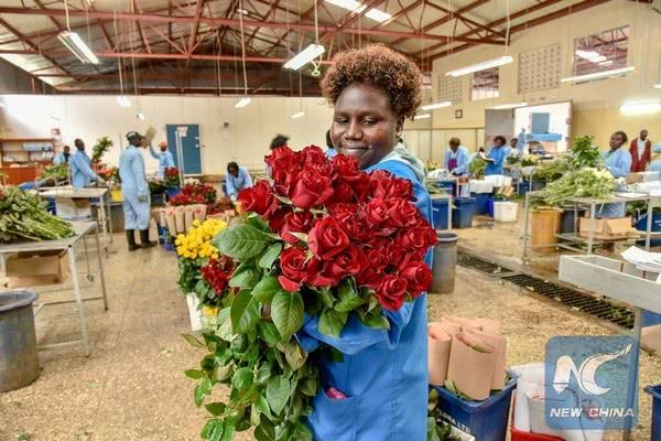 Отсутствие поддержки отрасли со стороны африканского правительства