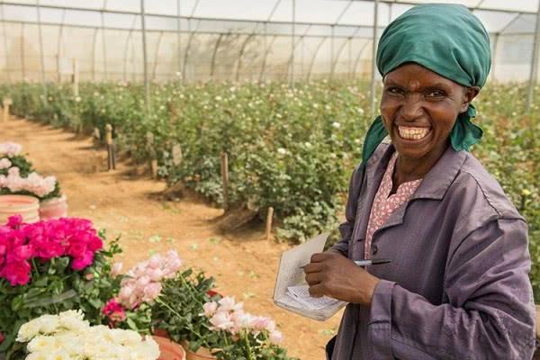Как Брекзит может повлиять на спрос на Кенийские цветы? - 2